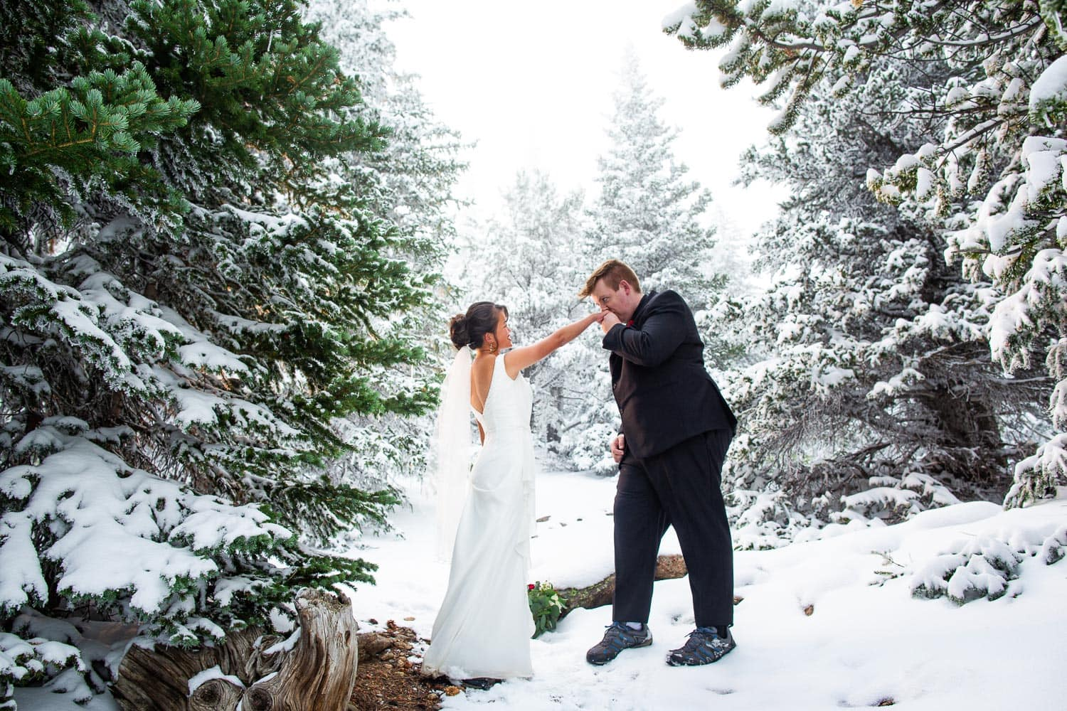 A groom kisses a bride's hand at their winter elopement surrounded by evergreen trees.