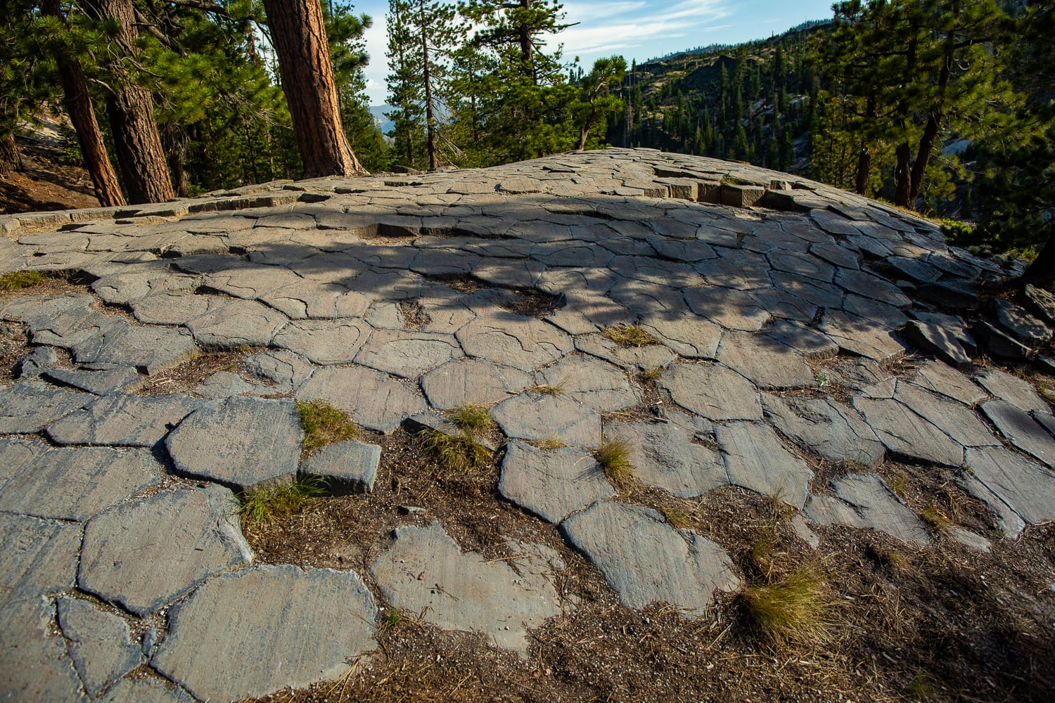 A natural hexagonal tile floor in the woods at Devil's postpile.