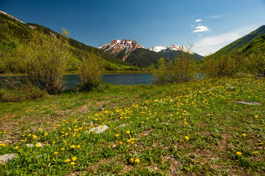 A lake in Ouray, Colorado with wildflowers and mountain peak views.