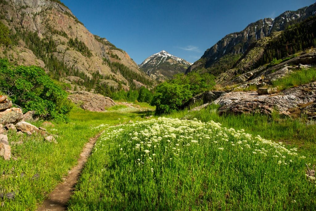 A summer elopement location in Ouray, Colorado.