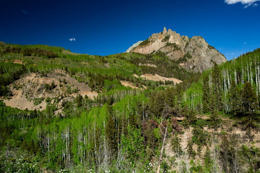 A view of the mountains and aspens in telluride, colorado