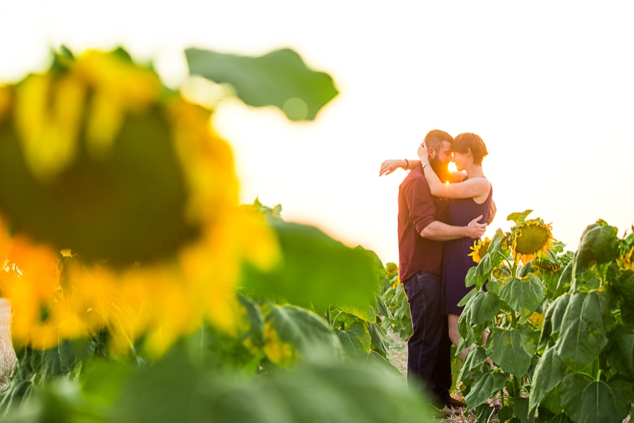 Denver Sunflowers Engagement Photos