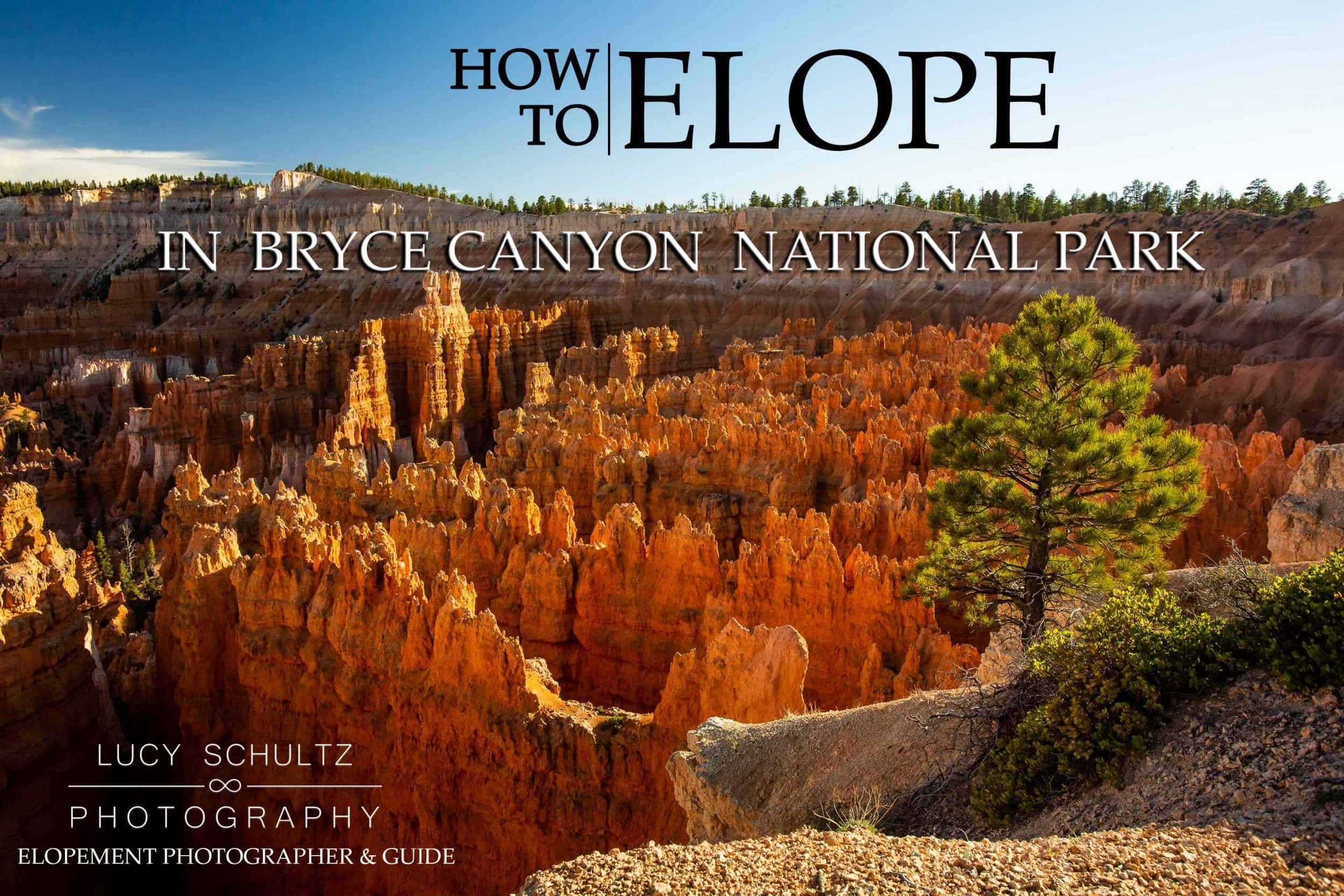 Bryce Canyon Elopement Locations