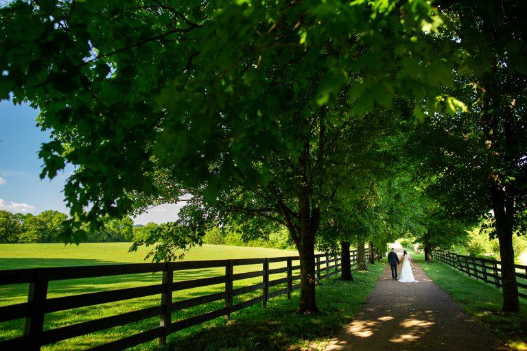 Backyard Wedding Photos in the South – Destination Wedding Photographer